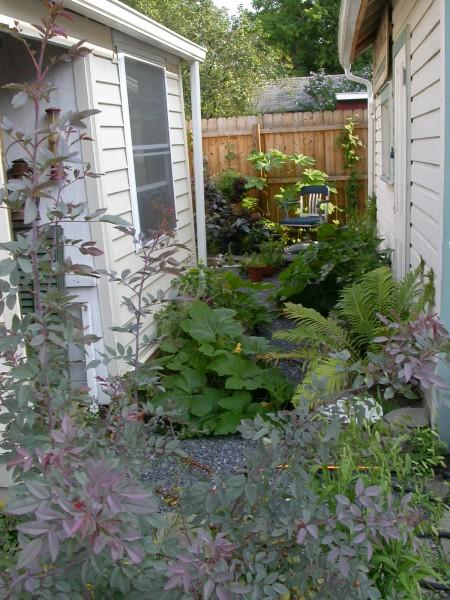 ithaca back terrace garden
